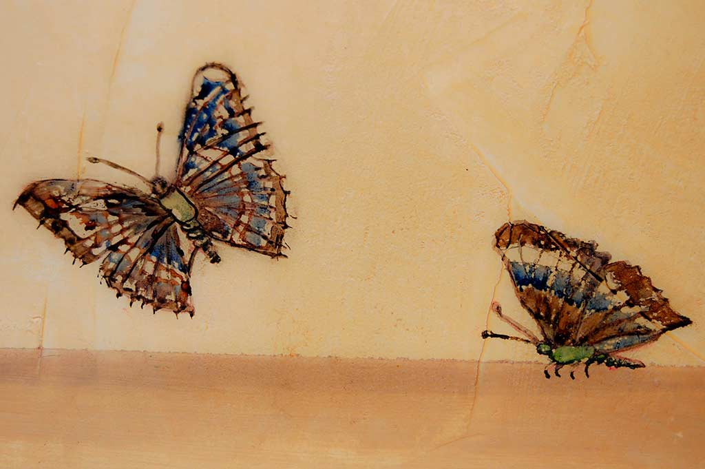 mariposas_trampeoeuil_ilustracion